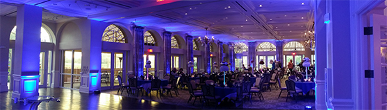 Royal blue Uplighting